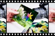 Introducción y conceptos básicos de la fotografía