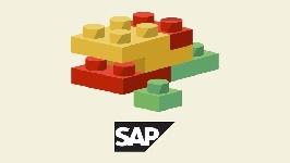 Negocios, SAP BW Mis Primeros Pasos