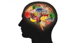 La Nutrición Inteligente/Fundamentos básicos