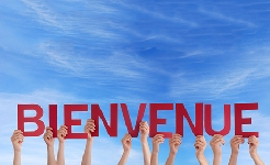 ¡Bonjour! Aprende Francés Básico
