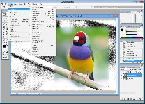 Photoshop actualizado: el arte de la edición fotográfica